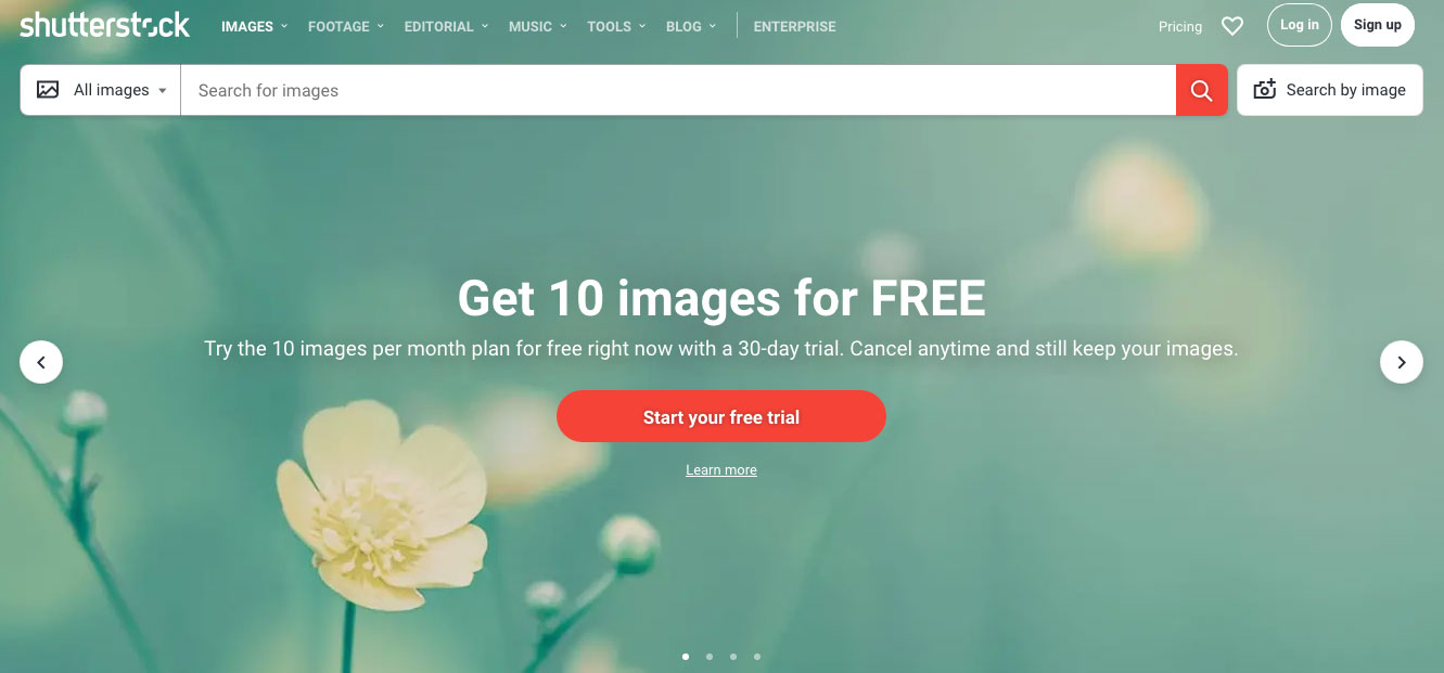 shutterstock-images-for-your-website